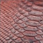 Textured deep brown